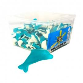 Dauphins bleus