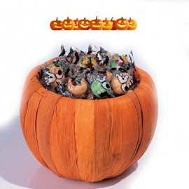 Citrouille pumkin Halloween
